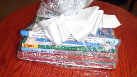 Sonlight book bundle